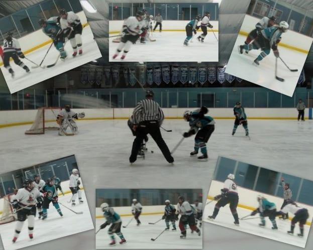 womenhockeycollage